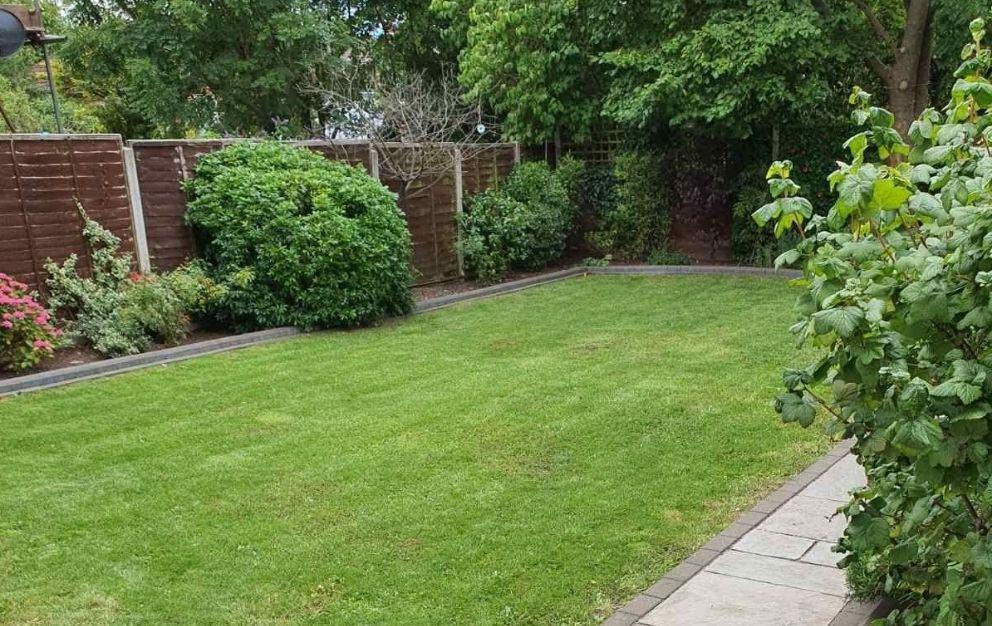 garden clearance North London