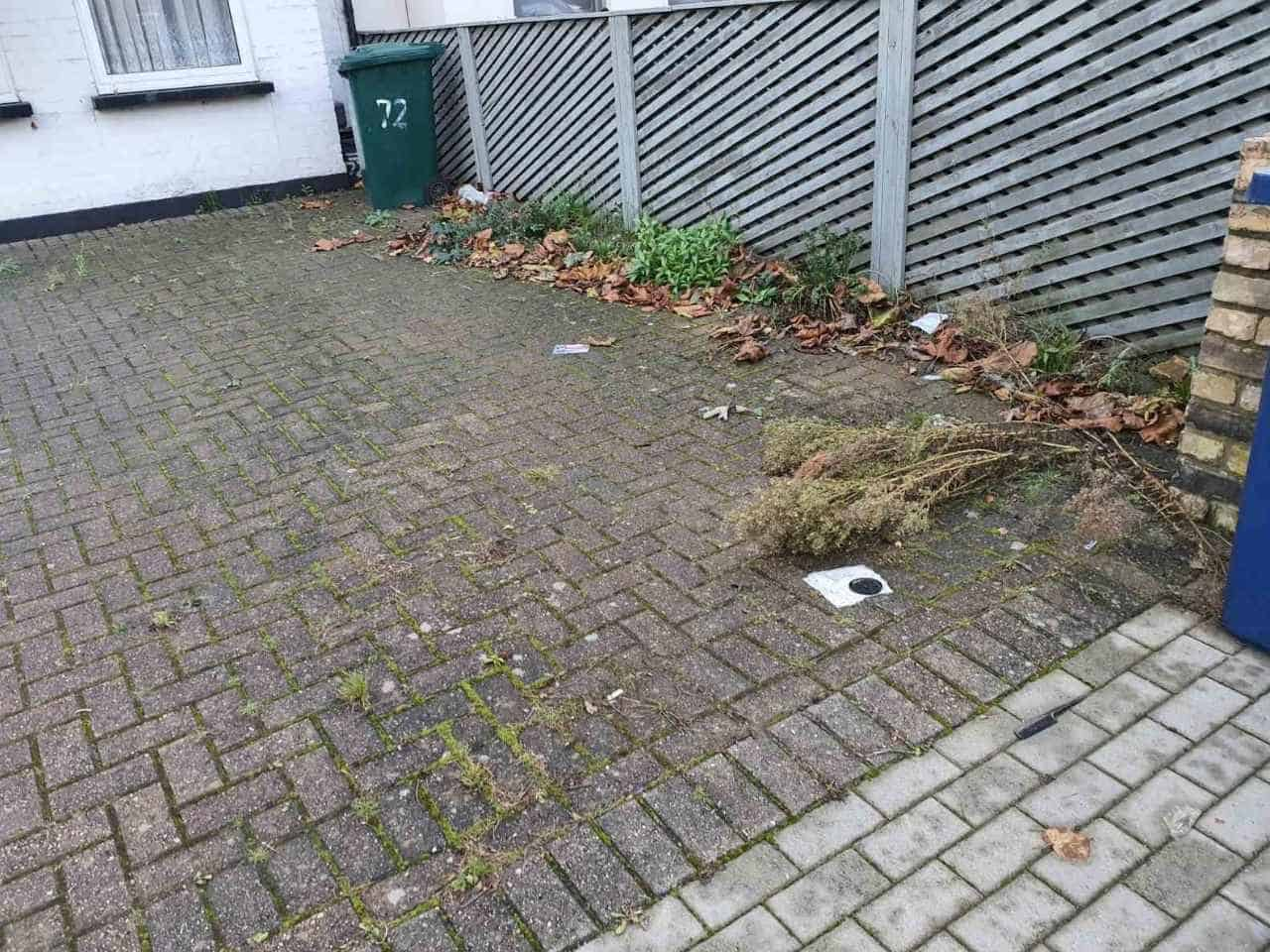 leaf clearance service North Finchley