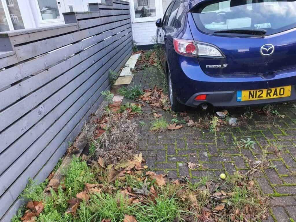 Seasonal leaf clearance service North Finchley
