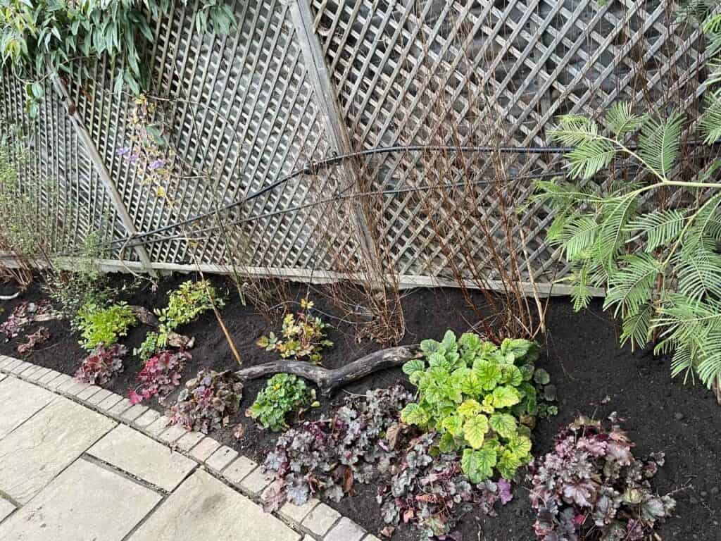 Stepped Raised Beds Installation in Palmers Green N13-12