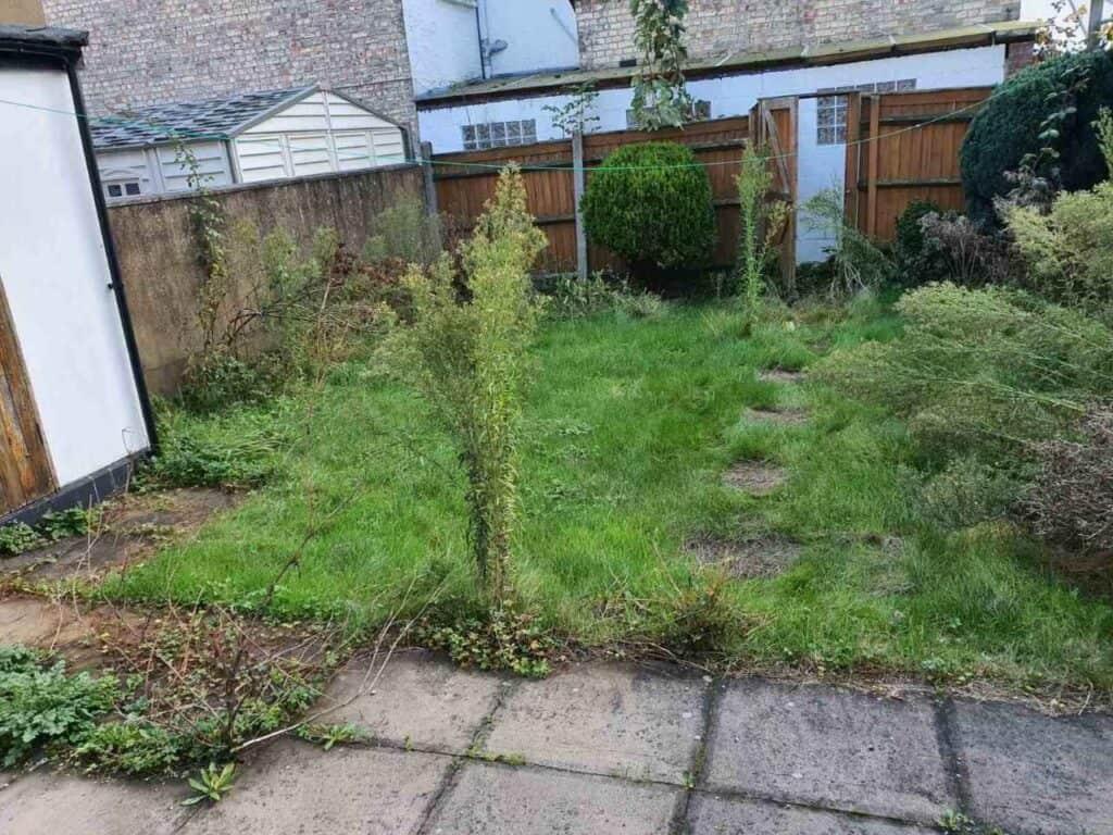 weeding North Finchley